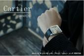 カルティエ 新作 新入荷&送料込(CARTIER) ブラック/シルバー メンズ W20073X8